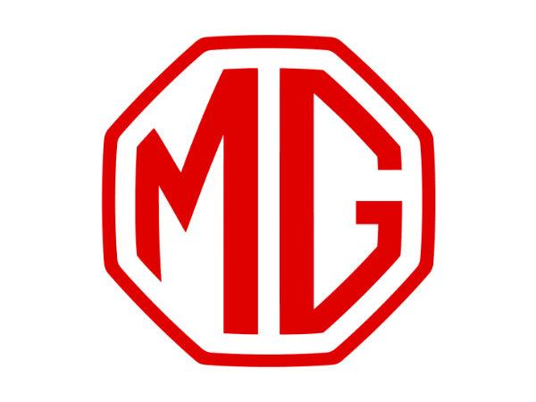 Дворники МГ